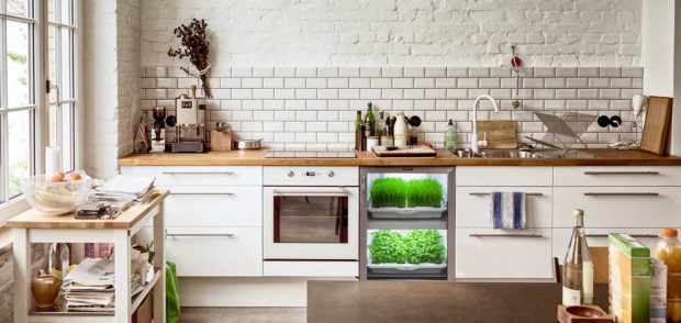 Urban Cultivator kitchen garden
