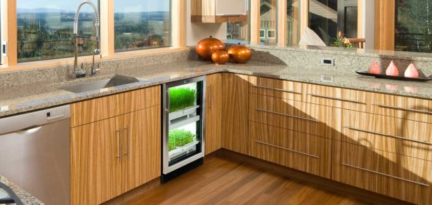 Urban Cultivator Grow Station